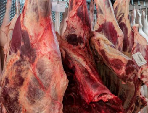 Recepti za goveje meso